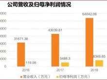 安恒信息预计2019全年净利润超八千万 同比增长至9.27%