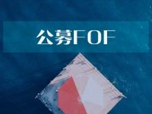 基会 | 首批公募FOF成立以来收益超28% 南方基金发行新混基吴剑毅任基金经理