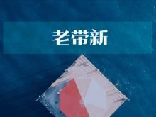 """汇添富基金推出新混基 郑磊""""老带新""""任职1只混基亏损"""